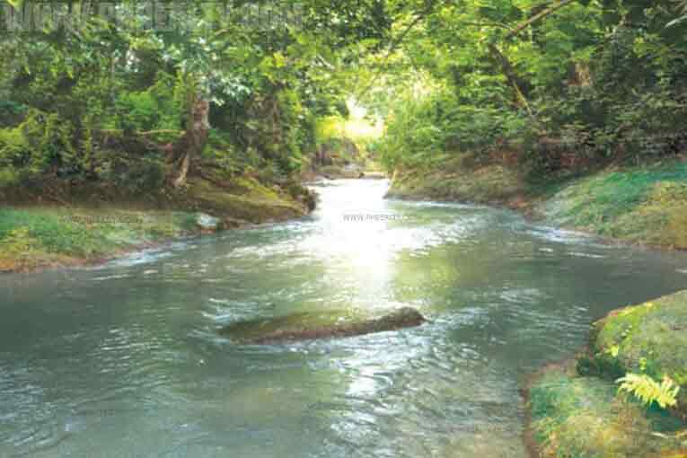 Greenwood Heights-Nature Trail