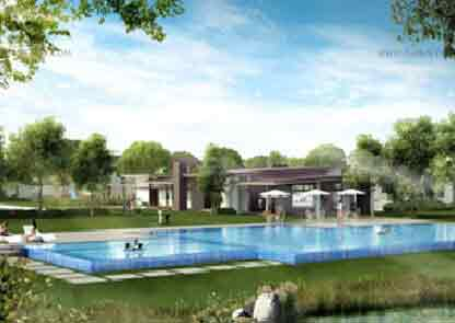 Swimming Pool and Basketball Court