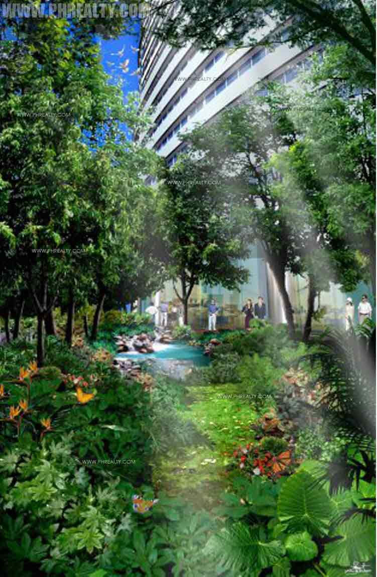 Mini Rain Forest