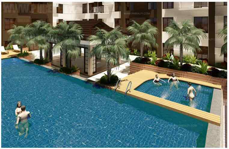 Swimming Pool and Spa Pool
